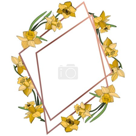 Illustration for Vector Yellow Narcissus floral botanical flower. Wild spring leaf wildflower isolated. Egraved ink art. Frame border ornament square. - Royalty Free Image