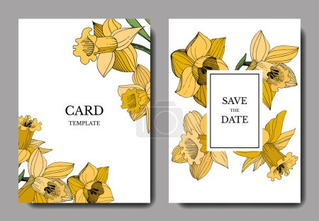 Illustration for Vector Narcissus floral botanical flower. Wild spring leaf wildflower isolated. Black and white engraved ink art. - Royalty Free Image