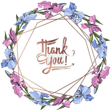 Illustration pour Vector rose et bleu fleur botanique floral iris. Wildflower de feuille de printemps sauvage isolé. Art d'encre gravé. Place de cadre bordure ornement. - image libre de droit