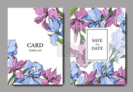 Illustration for Vector Irises illustration. Greeting cards templates with flowers, - Royalty Free Image