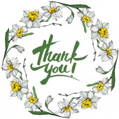 Vector White narcissus flowers Engraved ink art on white background Frame border ornament with thank you lettering