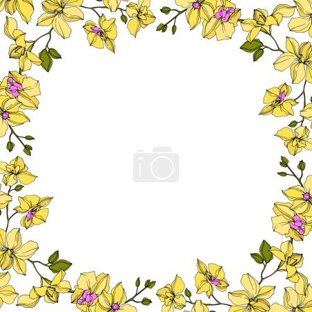 Illustration for Background with vector wreath of yellow orchid flowers isolated on white with copy space - Royalty Free Image