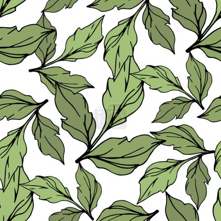 Illustration for Green vector leaves isolated on white. Engraved ink art. Seamless background pattern. - Royalty Free Image