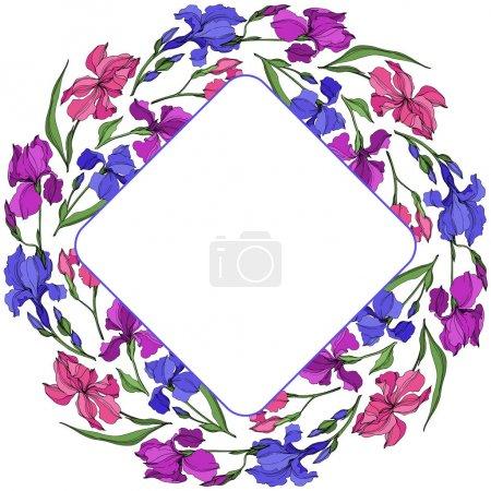 Vektoriris florale botanische Blumen. Schwarz-weiß gestochene Tuschekunst. Rahmen Rand Ornament Quadrat.