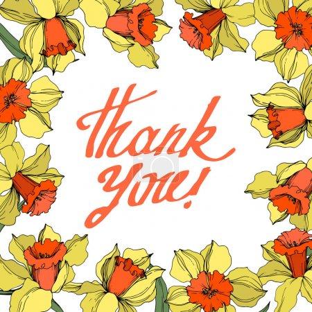 Illustration pour Fleur botanique florale de Vector Narcissus. Fleur sauvage de neige sauvage de feuille de source d'isolement. Art d'encre gravé jaune et orange. Carré d'ornement de bordure de cadre sur le fond blanc. - image libre de droit