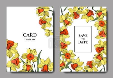 Vector Narcissus botanical flower. Yellow and green engraved ink art. Wedding background card floral decorative border.
