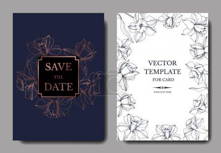 Illustration for Vector Narcissus floral botanical flower. Blue and copper engraved ink art. Wedding background card floral decorative border. Thank you, rsvp, invitation elegant card illustration graphic set banner. - Royalty Free Image