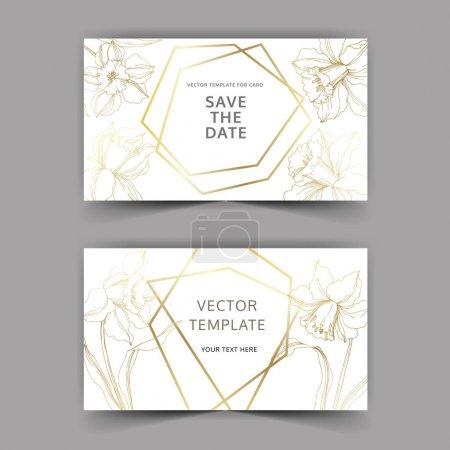 Illustration for Vector Narcissus floral botanical flower. Golden engraved ink art. Wedding background card floral decorative border. Thank you, rsvp, invitation elegant card illustration graphic set banner. - Royalty Free Image