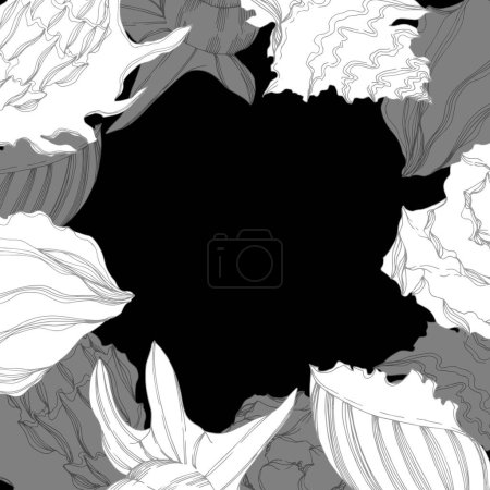 Illustration for Vector Summer beach seashell tropical elements. Frame border ornament with copy space. - Royalty Free Image