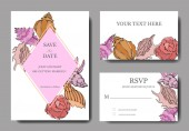 Vector Summer beach seashell tropical elements Template cards