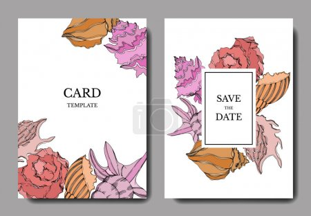 Illustration for Vector Summer beach seashell tropical elements. Template cards. - Royalty Free Image