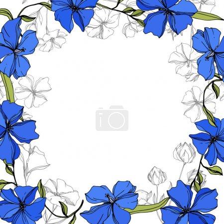 Illustration pour Fleurs botaniques florales de lin de vecteur. Fleur sauvage de neige sauvage de feuille de source d'isolement. Art d'encre gravé bleu et vert. Carré d'ornement de bordure de cadre sur le fond blanc. - image libre de droit