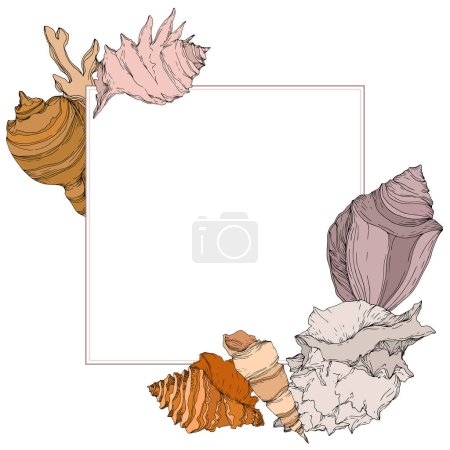 Illustration for Summer beach seashell tropical elements. Black and white engraved ink art. Frame border ornament square on white backgroud. - Royalty Free Image