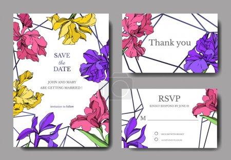 Iris florale botanische Blumen. Schwarz-weiß gestochene Tuschekunst. Hochzeit Hintergrund Karte Blumen dekorative Grenze.