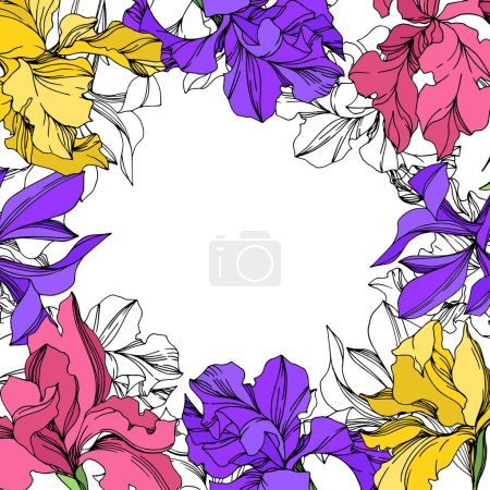 Illustration for Iris floral botanical flowers. Wild spring leaf wildflower isolated. Watercolor background illustration set. Watercolour drawing fashion aquarelle isolated. Frame border ornament square. - Royalty Free Image