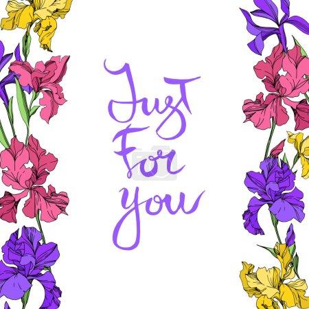 Illustration pour Fleurs botaniques florales d'iris. Fleur sauvage de neige sauvage de feuille de source d'isolement. Ensemble d'illustration de fond d'aquarelle. Aquarelle de mode de dessin d'aquarelle d'aquarelle d'aquarelle. Carré d'ornement de bordure de cadre. - image libre de droit