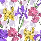 Iris floral botanical flowers Black and white engraved ink art Seamless background pattern