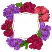 Peony floral botanical flowers Wild spring leaf wildflower Engraved ink art Frame border ornament square