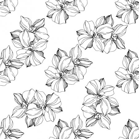 Illustration for Vector Orchid floral botanical flower. Wild spring leaf wildflower isolated. Black and white ngraved ink art. Seamless background pattern. Fabric wallpaper print texture. - Royalty Free Image