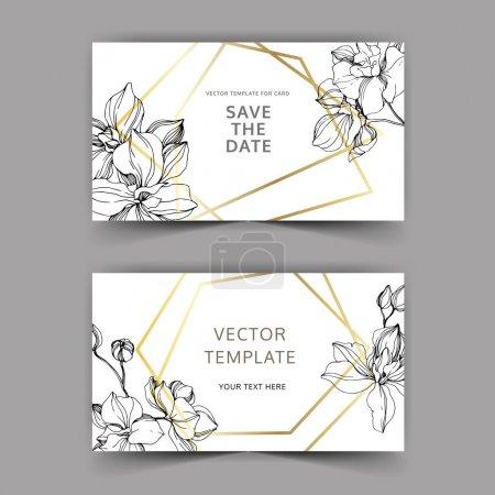 Illustration for Vector Orchid flower. Black and white engraved ink art. Wedding background card floral decorative border. Thank you, rsvp, invitation elegant card illustration graphic set banner. - Royalty Free Image