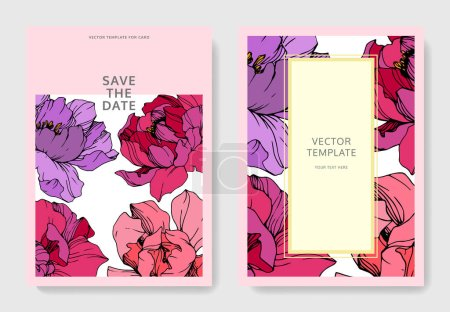Illustration for Vector Purple and pink peony. Floral botanical flower. Engraved ink art. Wedding background card floral decorative border. Thank you, rsvp, invitation elegant card illustration graphic set banner. - Royalty Free Image
