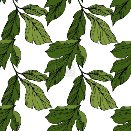Illustration for Vector Green leaf. Floral botanical flower. Wild spring leaf wildflower isolated. Engraved ink art. Seamless background pattern. Fabric wallpaper print texture. - Royalty Free Image