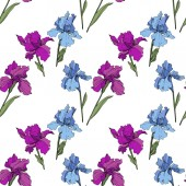 Vector Purple yellow and blue iris Floral botanical flower Wild spring leaf wildflower isolated Engraved ink art Seamless background pattern Fabric wallpaper print texture