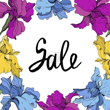 Illustration for Vector Purple, blue and yellow. Floral botanical flower. Wild spring leaf wildflower isolated. Frame border ornament square. Sale handwriting monogram calligraphy. - Royalty Free Image