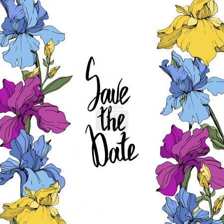 Illustration for Vector Purple, blue and yellow. Floral botanical flower. Wild spring leaf wildflower isolated. Frame border ornament square. Save the Date handwriting monogram calligraphy. - Royalty Free Image