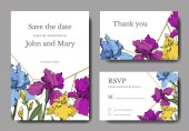 Vector Blue purple and yellow iris botanical flower Engraved ink art Wedding background card floral decorative border Thank you rsvp invitation elegant card illustration graphic set banner