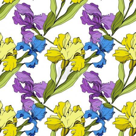 Illustration pour Fleur botanique florale de Vector Iris. Fleur sauvage de neige sauvage de feuille de source d'isolement. Art d'encre gravé. Modèle de fond sans couture. Texture d'impression de papier peint de tissu. - image libre de droit