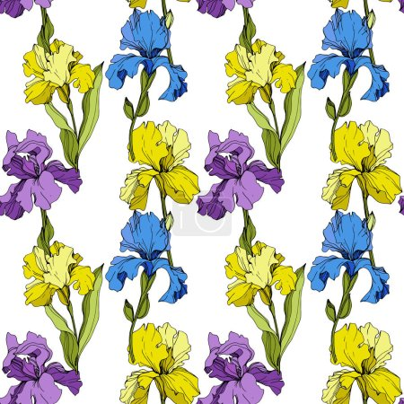 Illustration for Vector Iris floral botanical flower. Wild spring leaf wildflower isolated. Engraved ink art. Seamless background pattern. Fabric wallpaper print texture. - Royalty Free Image