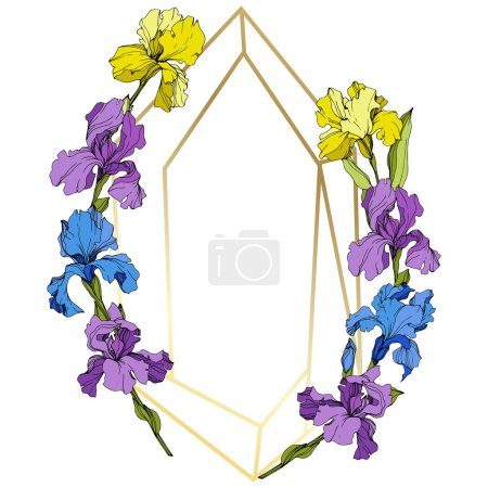 Illustration for Vector Purple, yellow and blue iris floral botanical flower. Wild spring leaf wildflower isolated. Engraved ink art. Frame border ornament square. - Royalty Free Image