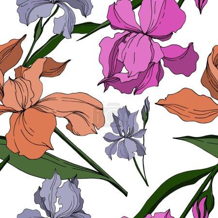 Illustration pour Vecteur Iris fleurs botaniques florales. Feuille sauvage de printemps fleur sauvage isolée. Encre gravée en noir et blanc. Modèle de fond sans couture. Texture d'impression papier peint tissu . - image libre de droit