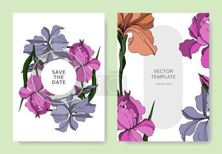 Illustration for Vector Iris floral botanical flowers. Black and white engraved ink art. Wedding background card floral decorative border. Thank you, rsvp, invitation elegant card illustration graphic set banner. - Royalty Free Image