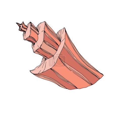 Ilustración de Vector Summer playa de conchas tropicales. Arte de tinta grabado. Elemento de ilustración de vaciados aislados sobre fondo blanco. - Imagen libre de derechos