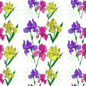 Vector Iris floral botanical flowers Black and white engraved ink art Seamless background pattern