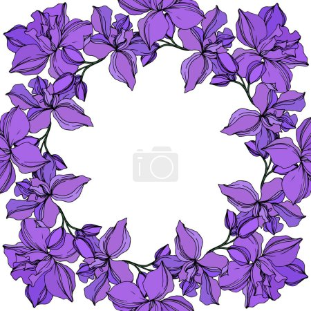Illustration for Vector Orchid floral botanical flowers. Wild spring leaf wildflower isolated. Black and purple engraved ink art. Frame border ornament square on white background. - Royalty Free Image