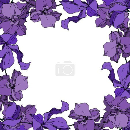 Illustration for Vector Orchid floral botanical flowers. Wild spring leaf wildflower isolated. Black and white engraved ink art. Frame border ornament square on white background. - Royalty Free Image