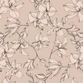 """Постер, картина, фотообои """"Вектор орхидея цветочные ботанические цветы. Черно-белые выгравированные чернила искусства. Бесшовный фоновый шаблон."""""""