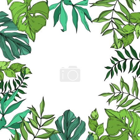 Illustration for Vector Exotic tropical hawaiian summer. Palm beach tree leaves jungle botanical. Black and white engraved ink art. Frame border ornament square on white background. - Royalty Free Image