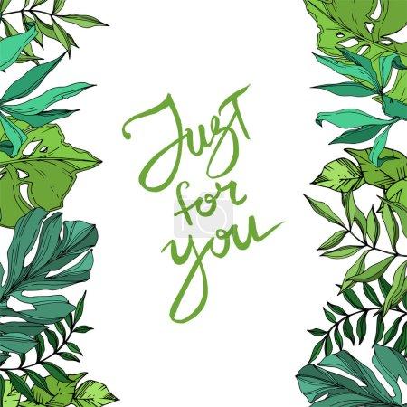 Illustration pour Vecteur Été hawaïen tropical exotique. Palm plage arbre feuilles jungle botanique. Encre gravée en noir et blanc. Cadre bordure ornement carré sur fond blanc . - image libre de droit