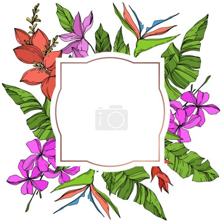 Illustration for Vector Exotic tropical hawaiian summer. Palm beach tree leaves jungle botanical plant. Black and white engraved ink art. Frame border ornament square. - Royalty Free Image