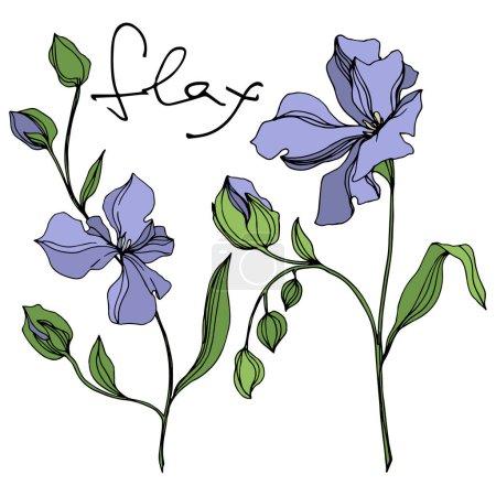 Ilustración de Flores botánicas florales vectores de lino. Hoja de primavera silvestre wildflower aislado. Arte de tinta grabada en blanco y negro. Elemento de ilustración de lino aislado sobre fondo blanco. - Imagen libre de derechos