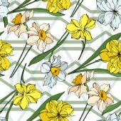 Vector Narcissus floral botanical flowers Black and white engraved ink art Seamless background pattern