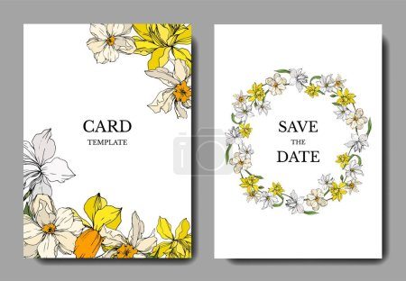 Illustration for Vector Narcissus floral botanical flowers. Black and white engraved ink art. Wedding background card decorative border. Thank you, rsvp, invitation elegant card illustration graphic set banner. - Royalty Free Image