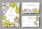 Vector Narcissus floral botanical flowers Black and white engraved ink art Wedding background card decorative border