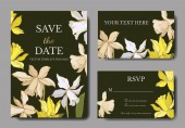 Vector Narcissus floral botanical flowers Black and white engraved ink art Wedding background card decorative border
