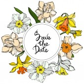 Vector Narcissus floral botanical flower Black and white engraved ink art Frame border ornament square