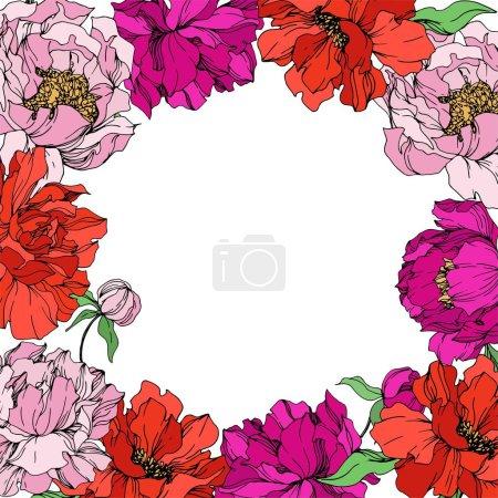 Illustration pour Fleurs botaniques florales pivoines. Fleur sauvage de neige sauvage de feuille de source d'isolement. Art d'encre gravé noir et blanc. Carré d'ornement de bordure de cadre sur le fond blanc. - image libre de droit
